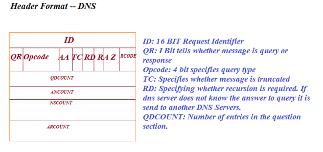 Header format of DNS Protocol