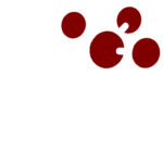 AI SANGAM